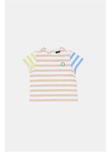 BG Baby Erkek Bebek Çizgili T-Shirt Renkli